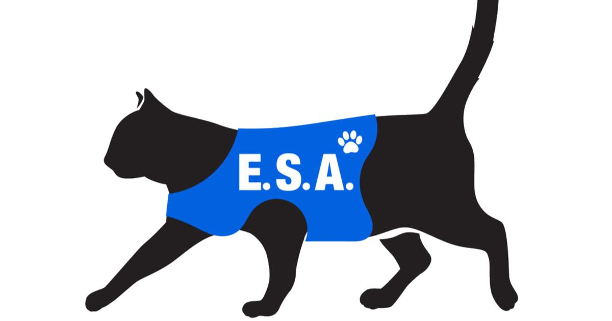 ESA vest