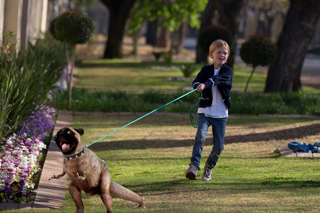 dog breeds that are hard to train